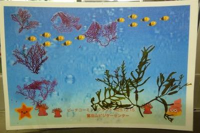 鷲羽山の海岸で採った海草を、のりで絵葉書に張るつけてラミネートして、できあがり。